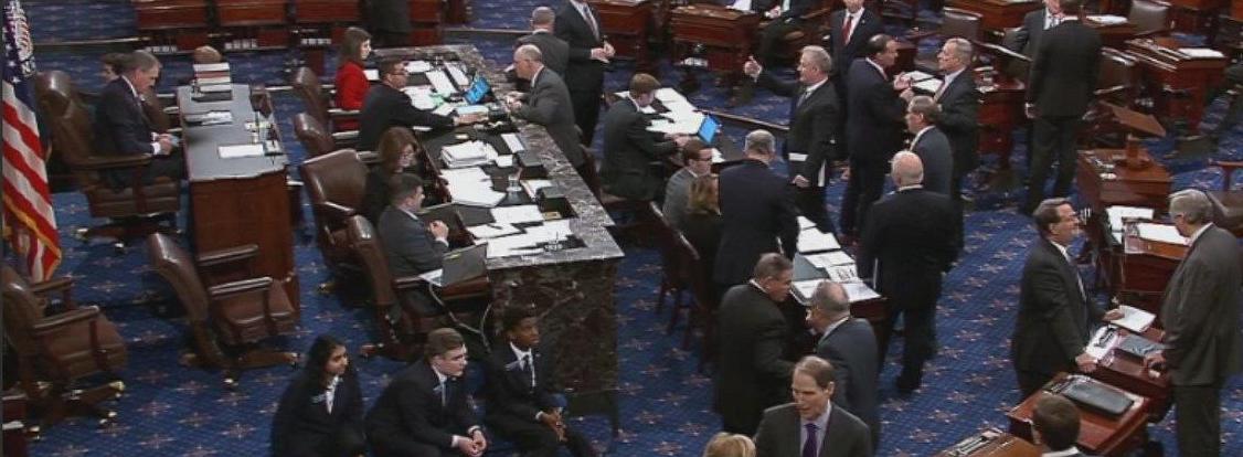 Amerikan Senato tutanaklarında Barış Pınarı Harekatı ve öncesi